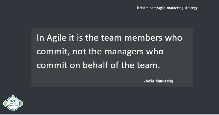 Fact about agile marketing and team work